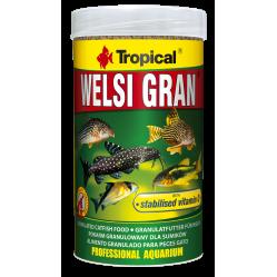 TROPICAL WELSI GRAN 250ML/162,5G