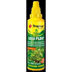 TROPICAL AQUA PLANT 30ML